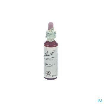 bach-flower-remedie-37-wild-rose-20-ml