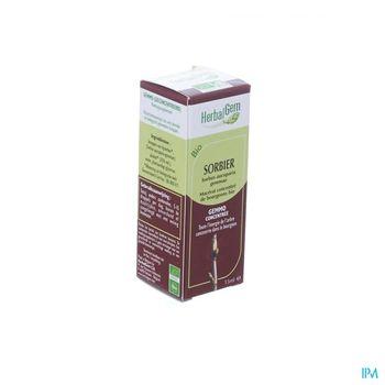 herbalgem-sorbier-macerat-concentre-de-bourgeons-15-ml