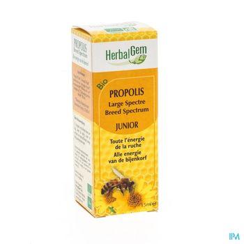 herbalgem-propolis-junior-large-spectre-bio-gouttes-15-ml