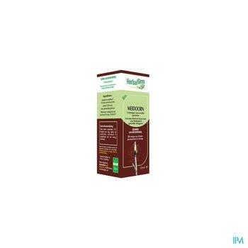 herbalgem-aubepine-macerat-concentre-de-bourgeons-bio-50-ml