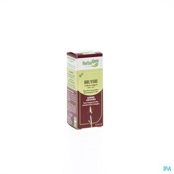 herbalgem-bruyere-macerat-concentre-de-bourgeons-15-ml