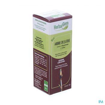 herbalgem-arbre-de-judee-macerat-concentre-de-bourgeons-bio-50-ml